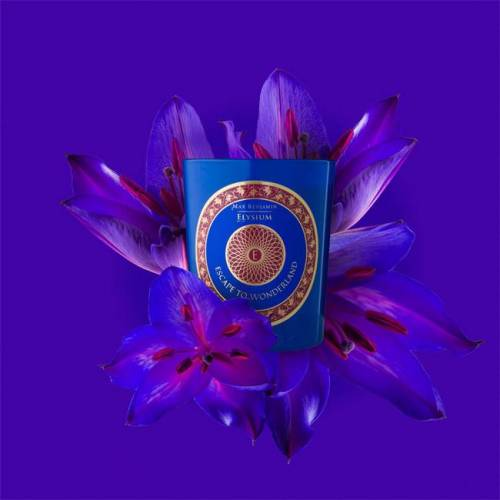 Max Benjamin Aromatinė žvakė Max Benjamin Elysium Escape to Wonderland 33,00EUR