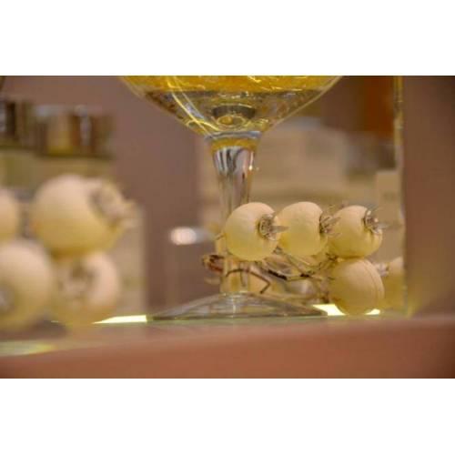 Dr. Vranjes Firenze Namų kvapo 500 ml Terra papildymas iš Dr. Vranjes Firenze kolekcijos 64,00EUR